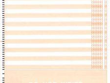 Scanning Orange Sheet-Back