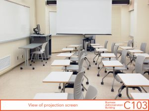 View of projection screen